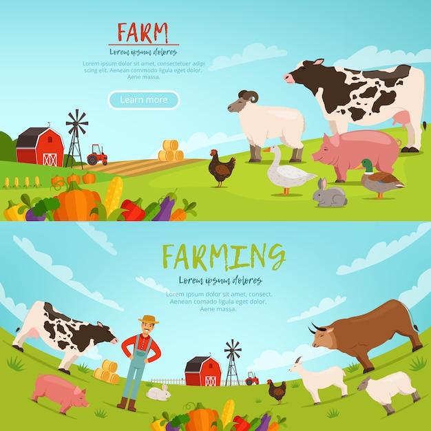 Ilustracje Wektorowe Agrobiznesu. Banery Z Krajobrazem Gospodarstwa Z Domu Premium Wektorów