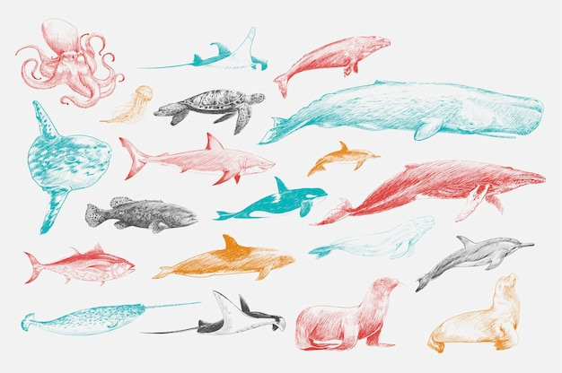 Ilustracyjny rysunkowy styl morska życie kolekcja Darmowych Wektorów