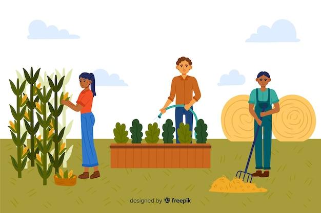 Ilustrowany zestaw pracujących rolników Darmowych Wektorów