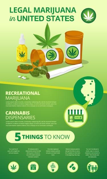 Infografika Statusu Legalizacji Marihuany W Stanach Zjednoczonych Premium Wektorów