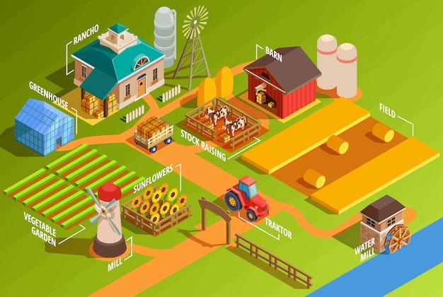 Infografiki farma izometryczny Darmowych Wektorów