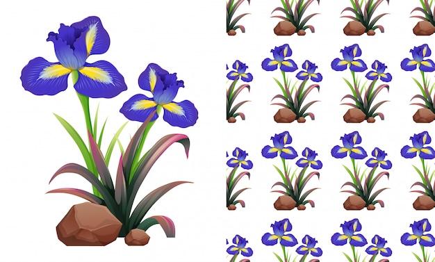 Irys bezszwowe kwiaty na skałach Darmowych Wektorów