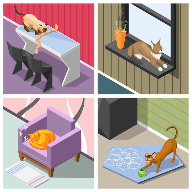 Izometryczne Koty Rasowe Darmowych Wektorów