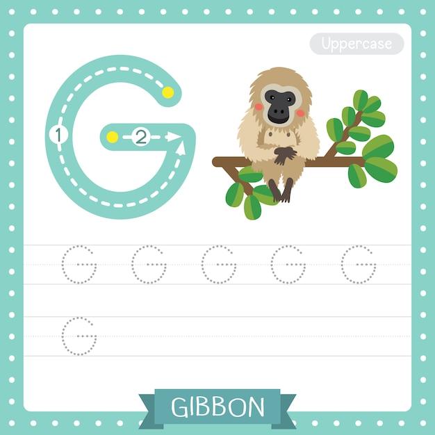 Jak pisać wielką literą g. arkusz ćwiczeń śledzenia alfabetu abc gibona siedzącego na gałęzi dla dzieci uczących się angielskiego słownictwa Premium Wektorów