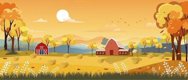 Jesieni Panoramy Krajobrazu Rolny Pole Z Pomarańczowym Niebem Premium Wektorów