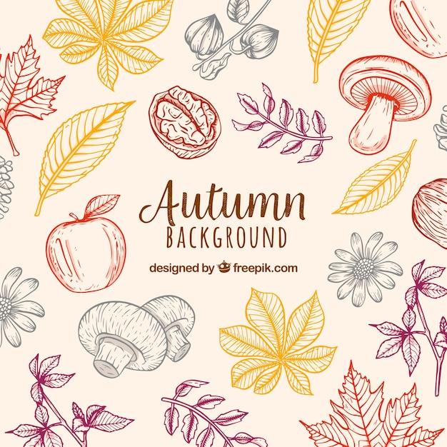 Jesieni Tło Z Naturą Premium Wektorów