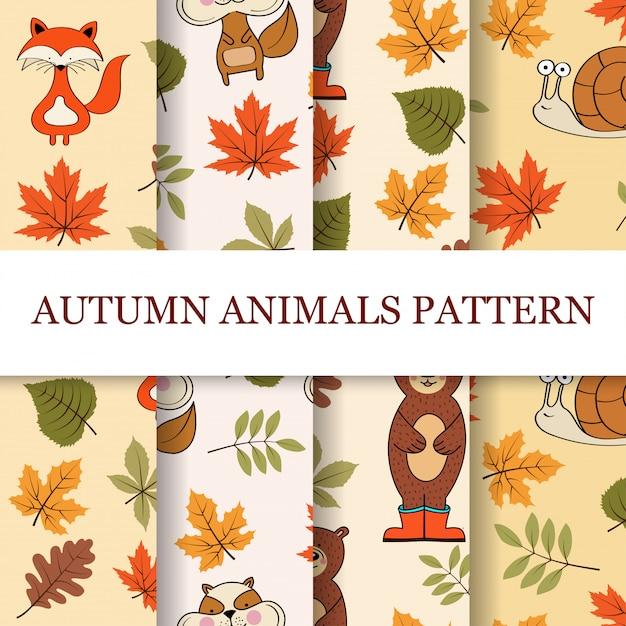 Jesienna kolekcja wzorów Premium Wektorów