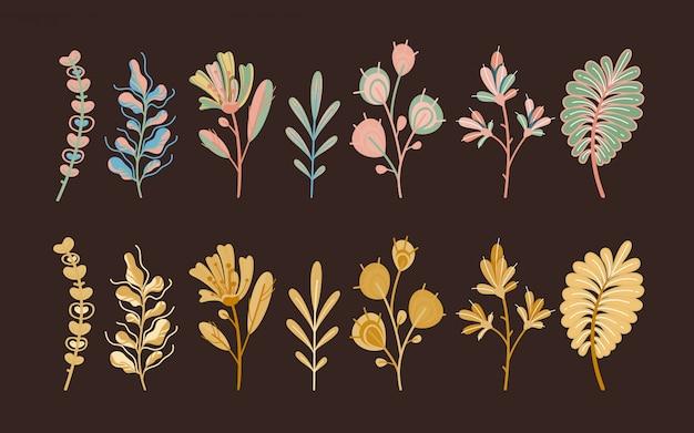 Jesienne Rośliny. Lasowi śliczni Abstraktów Liście, Zboże W Ogrodowych Ekologicznych Kwiatach Botanicznych Na Ciemnym Tła Pojęciu I Premium Wektorów
