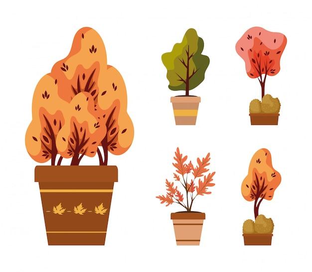 Jesienne Rośliny W Ceramicznych Doniczkach Ikony Premium Wektorów
