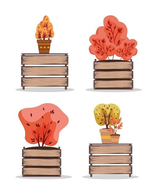 Jesienne Rośliny W Ceramicznych Doniczkach Nad Drewnianymi Stołami Premium Wektorów