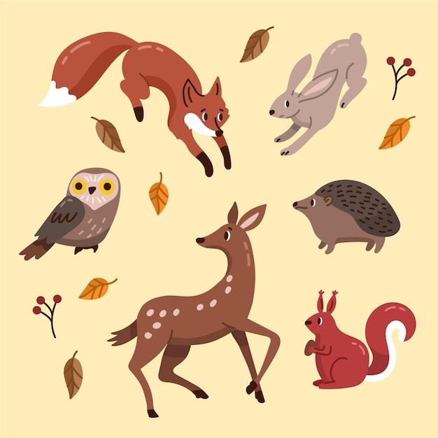 Jesienne Zwierzęta Leśne Ręcznie Rysowane Motyw Darmowych Wektorów