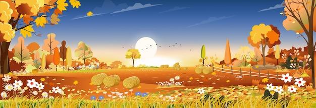 Jesienny Krajobraz W Polu Gospodarstwa Zbiorów Premium Wektorów