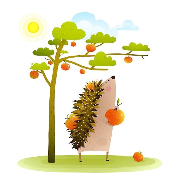 Jeż Gospodarstwa W Pobliżu Zbioru Jabłoni Premium Wektorów
