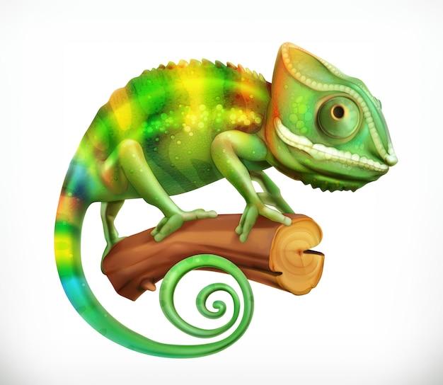 Kameleon. Premium Wektorów