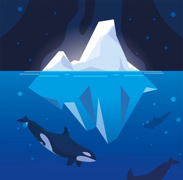 Killer Whale Whit Iceberg Pływających W Morzu Premium Wektorów