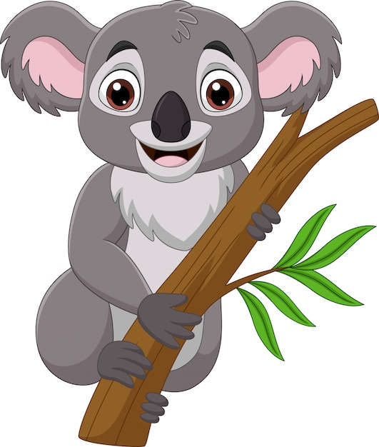 Koala Kreskówka Na Gałęzi Drzewa Premium Wektorów