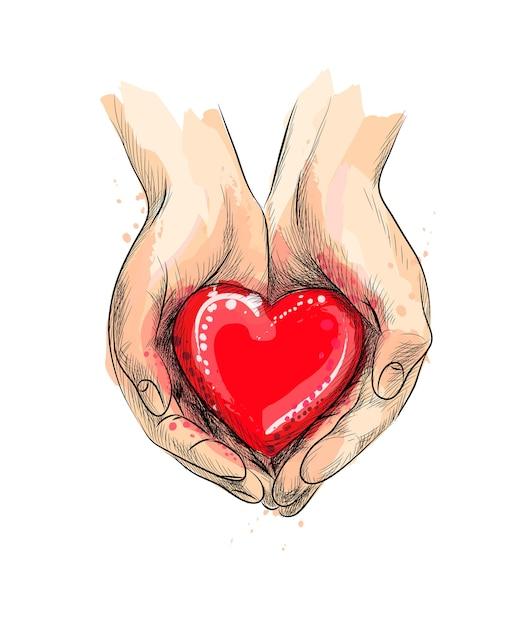 Kobiece Dłonie Dając Czerwone Serce Z Odrobiną Akwareli, Ręcznie Rysowane Szkic. Ilustracja Farb Premium Wektorów