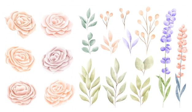 Kolekcja Akwarela Wiosna Kwiatów Darmowych Wektorów