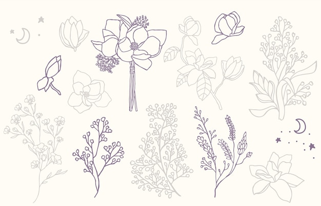 Kolekcja Beauty Flower Z Lawendą, Magnolią. Premium Wektorów