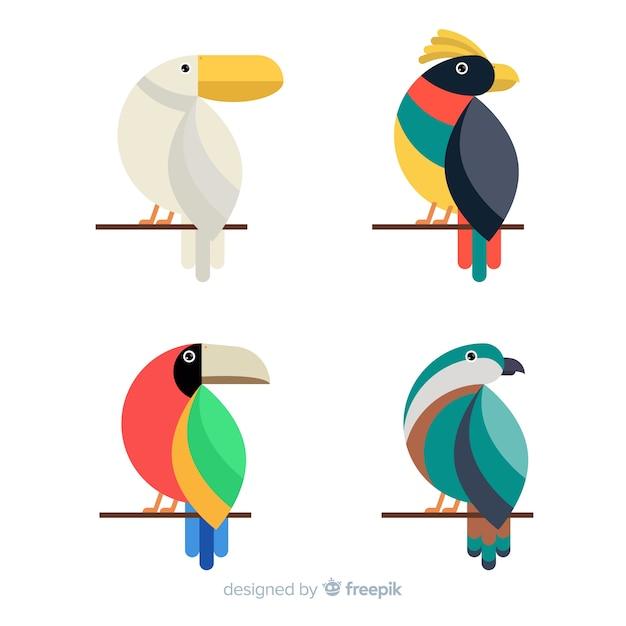 Kolekcja egzotycznych dzikich ptaków tropikalnych Darmowych Wektorów