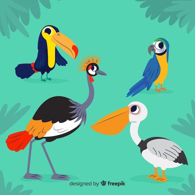 Kolekcja Egzotycznych Ptaków O Płaskiej Konstrukcji Darmowych Wektorów