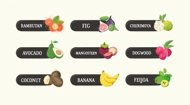 Kolekcja Etykiet Z Pysznymi, Dojrzałymi, Soczystymi Egzotycznymi Owocami Tropikalnymi I Ich Nazwami. Pakiet Tagów Z Smacznym Surowym Wegańskim Jedzeniem Na Białym Tle Premium Wektorów