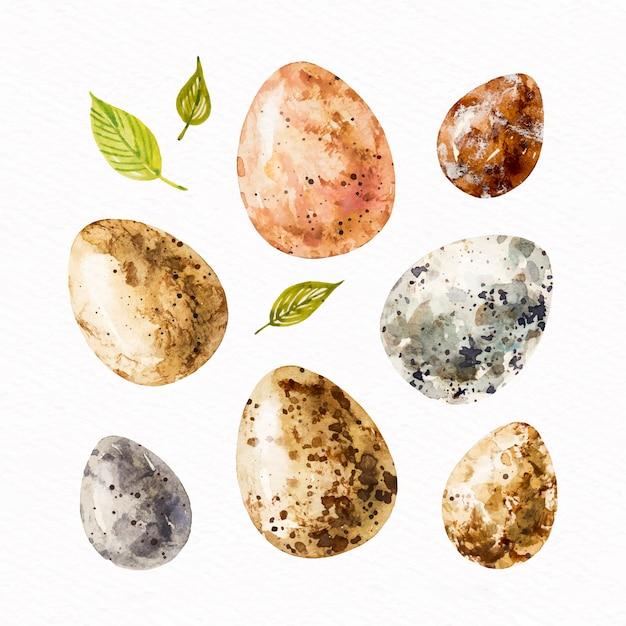 Kolekcja Jajek Wielkanocnych W Stylu Przypominającym Akwarele Darmowych Wektorów