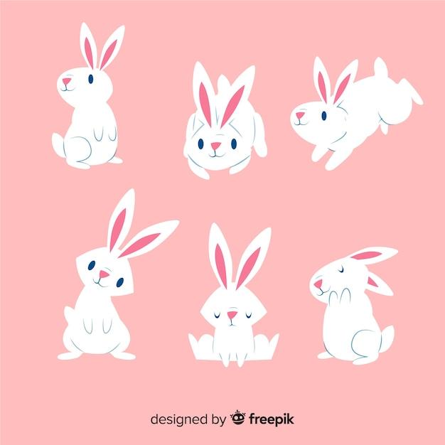 Kolekcja królika dzień wielkanocny Darmowych Wektorów