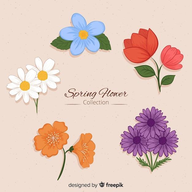 Kolekcja kwiatów wiosny Darmowych Wektorów