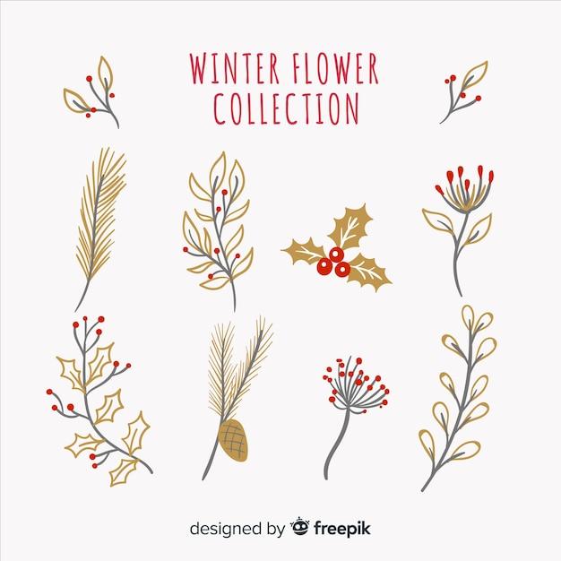 Kolekcja Kwiatów Zimowych Darmowych Wektorów