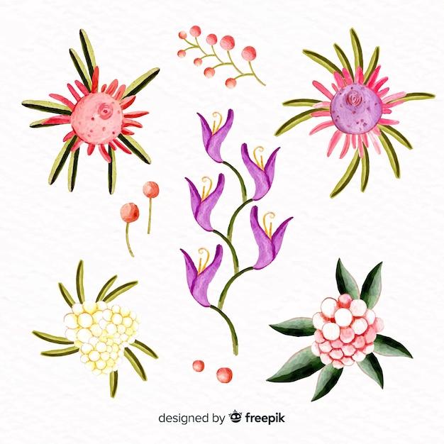 Kolekcja kwiatowa w stylu przypominającym akwarele Darmowych Wektorów
