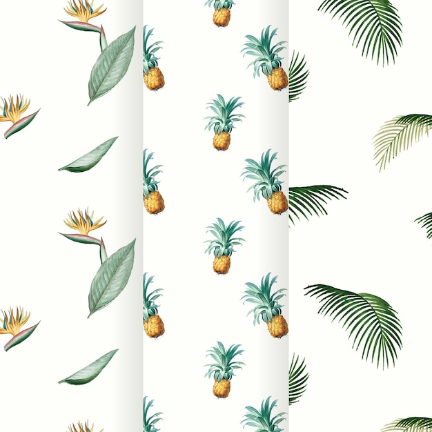 Kolekcja lato tropikalny wzór Darmowych Wektorów