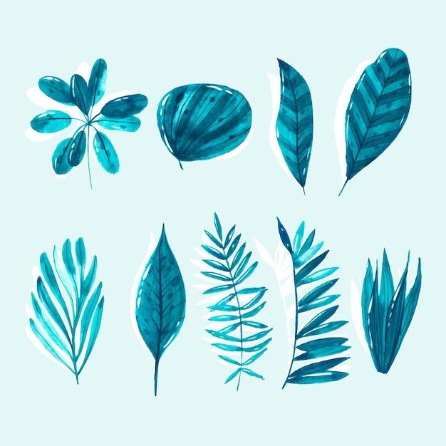 Kolekcja Monochromatycznych Liści Tropikalnych Darmowych Wektorów