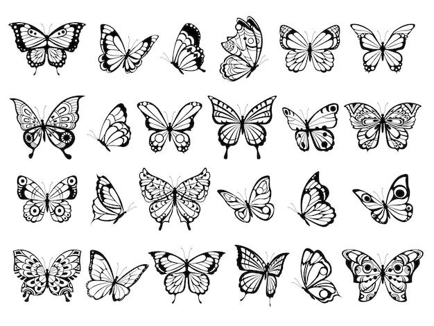 Kolekcja Motyli. Piękna Przyroda Latającego Owada, Egzotyczne Czarne Motyle Z Zabawnymi Zdjęciami Skrzydeł Premium Wektorów
