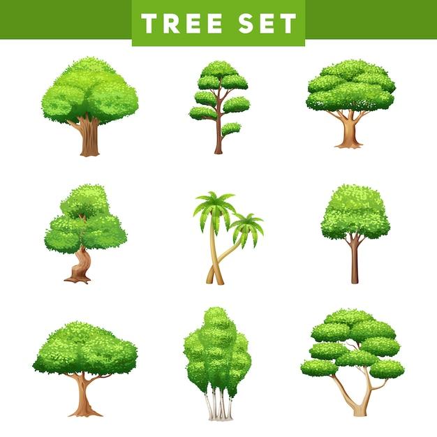 Kolekcja Piktogramy Płaskie Zielone Drzewa Z Różnych Kształtów Liści I Korony Darmowych Wektorów