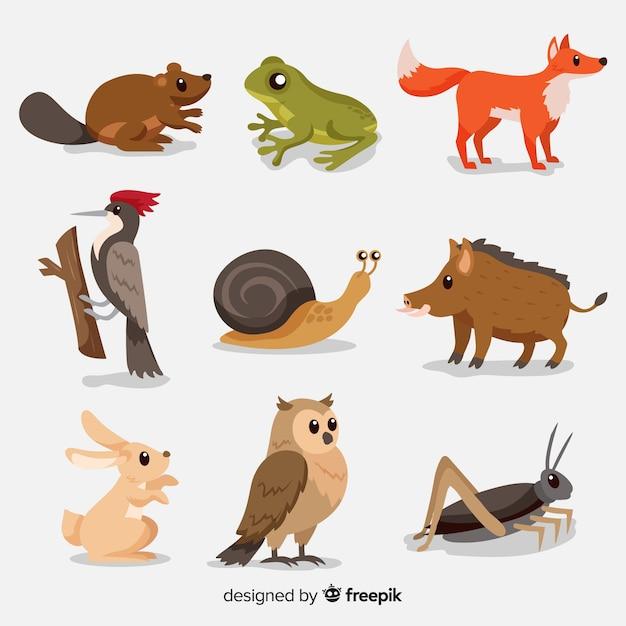 Kolekcja Płaskich Jesiennych Zwierząt Leśnych Premium Wektorów