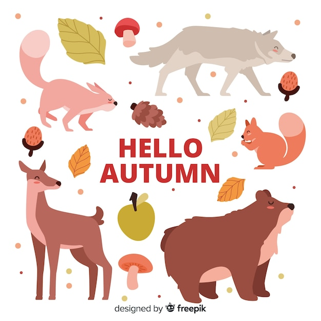 Kolekcja Płaskich Jesiennych Zwierząt Leśnych Darmowych Wektorów