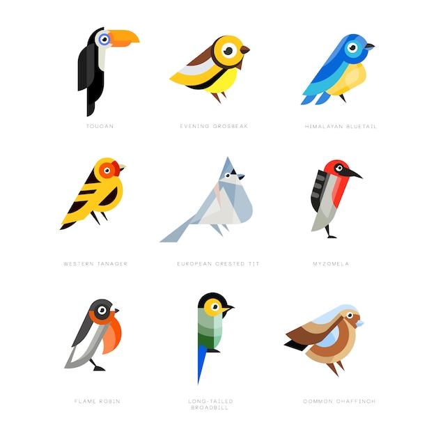 Kolekcja Ptaków, Liliowy Walec, Gil, Pita Czerwona Wybrzuszona, Bogatka, Zimorodek, Kardynał Północny, żołna, Wróbel, Wspaniałe Ilustracje Wróżki Premium Wektorów