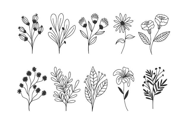 Kolekcja Ręcznie Rysowane Kwiaty Darmowych Wektorów