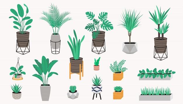 Kolekcja Roślin Doniczkowych W Stylu Loftu. Sukulenty, Kaktus I Rośliny Domowe. Zestaw Roślin Domowych Premium Wektorów