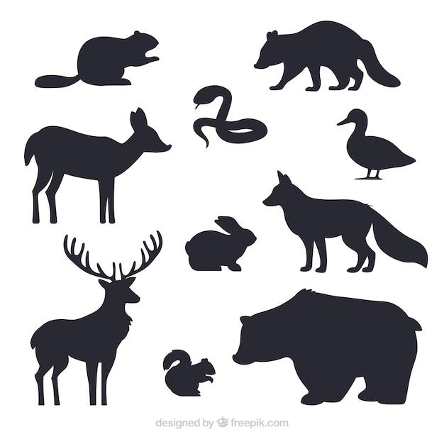 Kolekcja Silhouettes Zwierząt Darmowych Wektorów