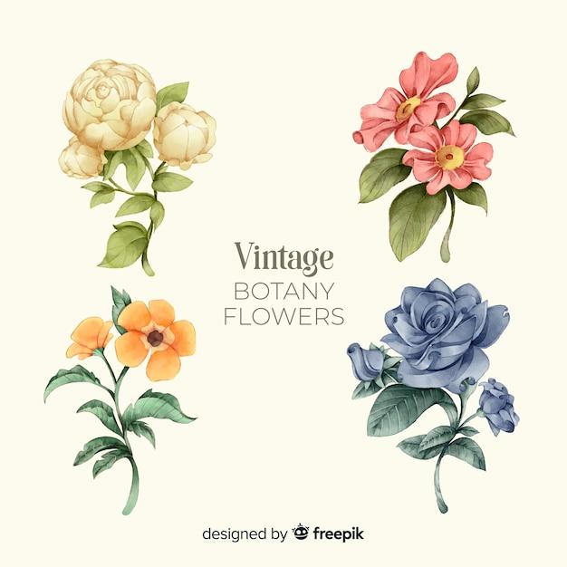 Kolekcja starych kwiatów Darmowych Wektorów
