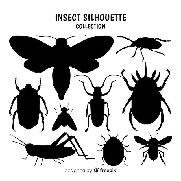 Kolekcja sylwetka owadów Darmowych Wektorów