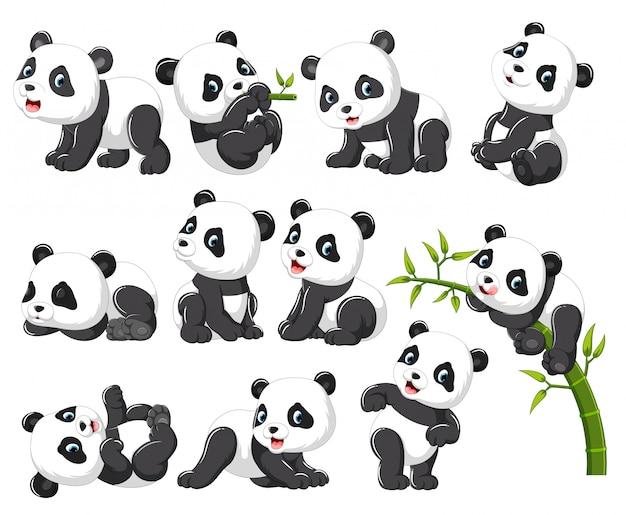 Kolekcja szczęśliwa panda z różnymi pozami Premium Wektorów