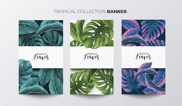 Kolekcja Tropikalny Baner Darmowych Wektorów