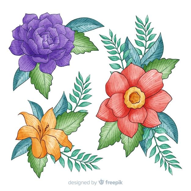 Kolekcja tropikalnych kwiatów na białym tle Darmowych Wektorów