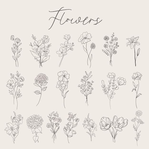 Kolekcja Zestaw Kwiatów Premium Wektorów