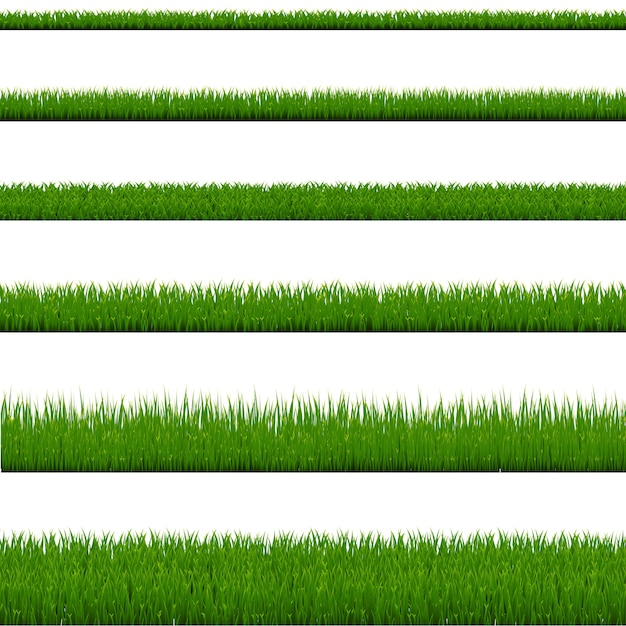 Kolekcja Zielona Trawa Na Białym Tle Premium Wektorów