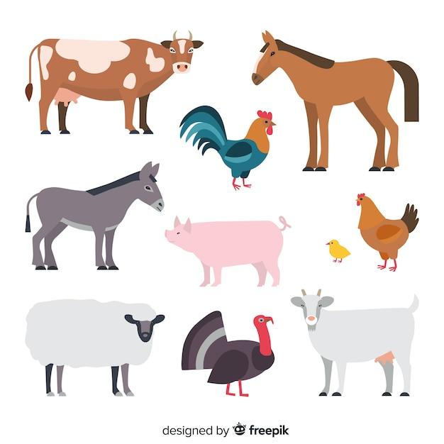 Kolekcja zwierząt gospodarskich o płaskiej konstrukcji Darmowych Wektorów