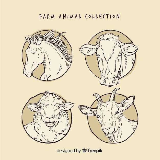 Kolekcja zwierząt gospodarskich w stylu wyciągnąć rękę Darmowych Wektorów